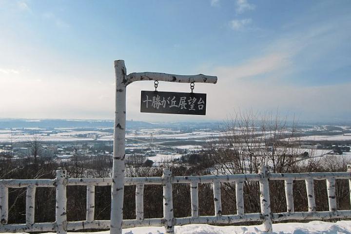 【北海道牧場求人】大自然の中で牛達と一緒にお仕事しましょう!
