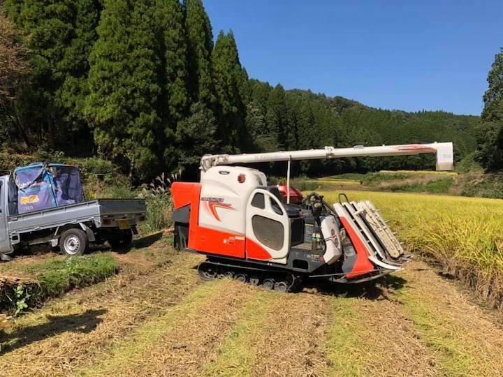 【熊本県農場求人】野菜の栽培に興味のある方は必見です!